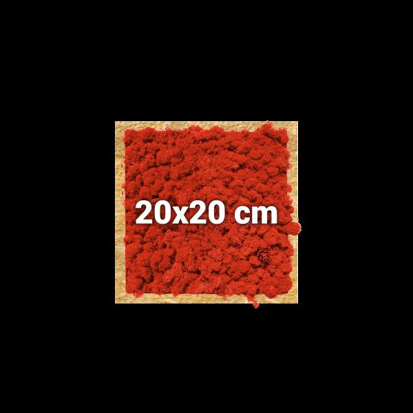 Moosbild, quadratisch, 20x20 cm