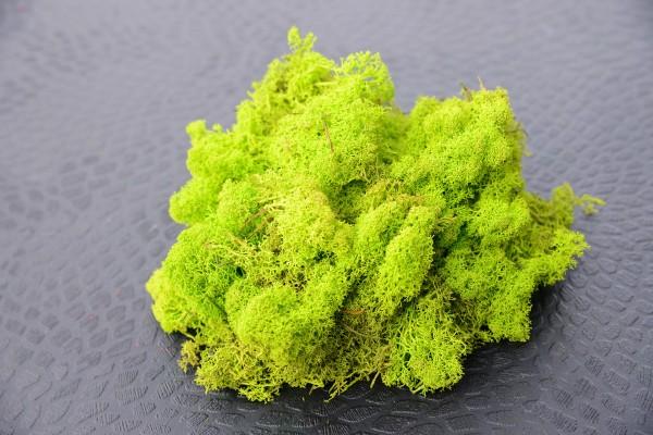 Premium Dekomoos May Green