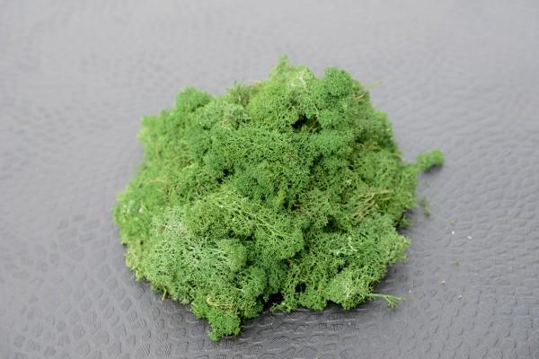 Premium Dekomoos Leaf Green