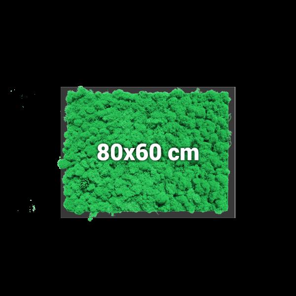 Moosbild, rechteckig, 80x60 cm